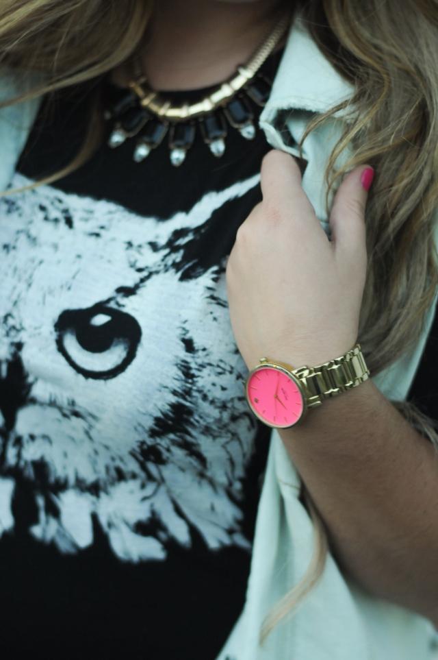owl-10